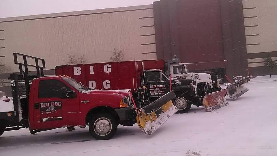 bigdogdisposal-snow plowing and sanding